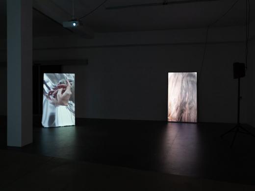 Výstava Lucie Scerankové v Bratislavské galerii ZAHORIAN & VAN ESPEN 18.9. - 15.10.2020